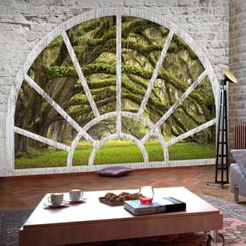 Fototapeta samoprzylepna - Okno do Tajemniczego Lasu