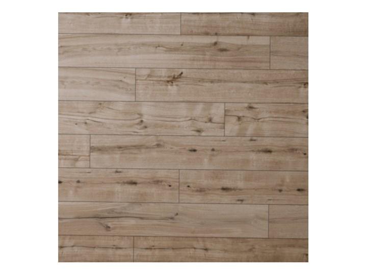 Panele podłogowe wodoodporne Classen Dąb Nantes AC5 1,973 m2 Grubość 8 mm Kolor Brązowy