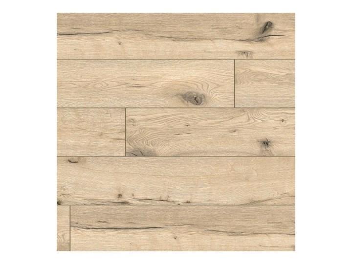 Panele podłogowe wodoodporne Classen Dąb Niasa AC5 1,973 m2 Grubość 8 mm