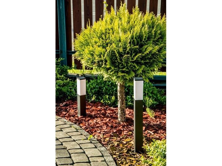 Słupek ogrodowy TULIS 40 E27 czarny IP44 Garden Line EDO777385 EDO Kategoria Lampy ogrodowe