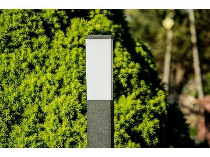 Słupek ogrodowy TULIS 60 E27 czarny IP44 Garden Line EDO777387 EDO Kategoria Lampy ogrodowe