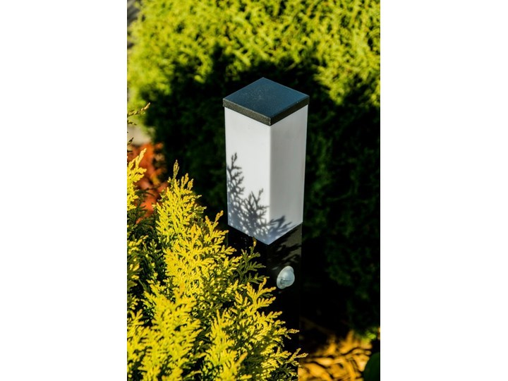 Słupek ogrodowy TULIS 60 PIR z czujnikiem ruchu, E27 czarny IP44 Garden Line EDO777388 EDO Kategoria Lampy ogrodowe