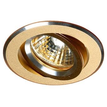 Oprawa sufitowa uchylna Aluminium Satyna Złoto, Candellux