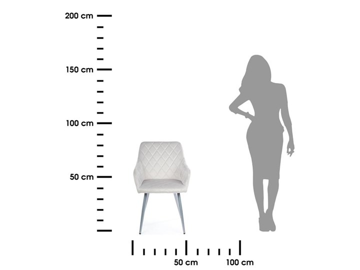 Krzesło Rico Light Gray Metal Welur Tkanina Kategoria Krzesła kuchenne