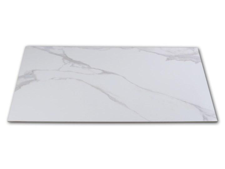 Pontremoli Mate 60x120 płytki imitujące marmur Prostokąt Powierzchnia Matowa Płytki ścienne 60x120 cm Gres Płytki podłogowe Kolor Biały