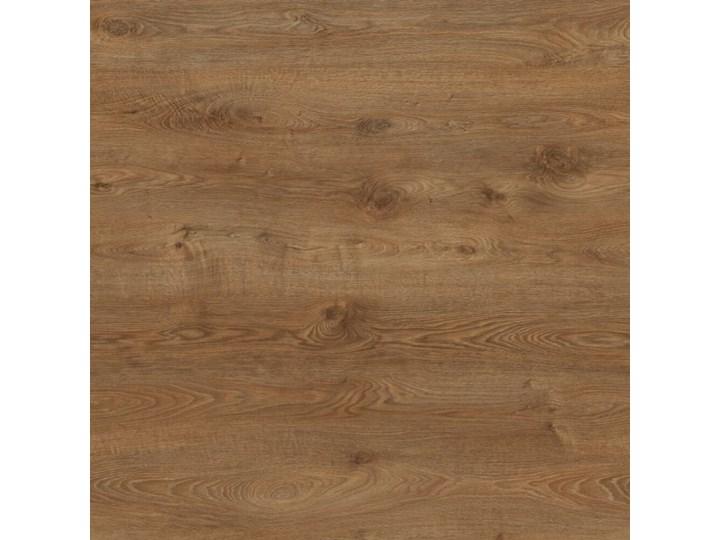Panele podłogowe WILD WOOD EFFECT PREMIUM ALTAY AC5 12 mm Kolor Brązowy