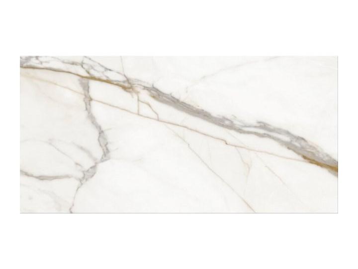 Płytka ścienna DEW STONE white mat 29,7x60 gat. II Płytki ścienne 30x60 cm 29,7x60 cm Wzór Kamień