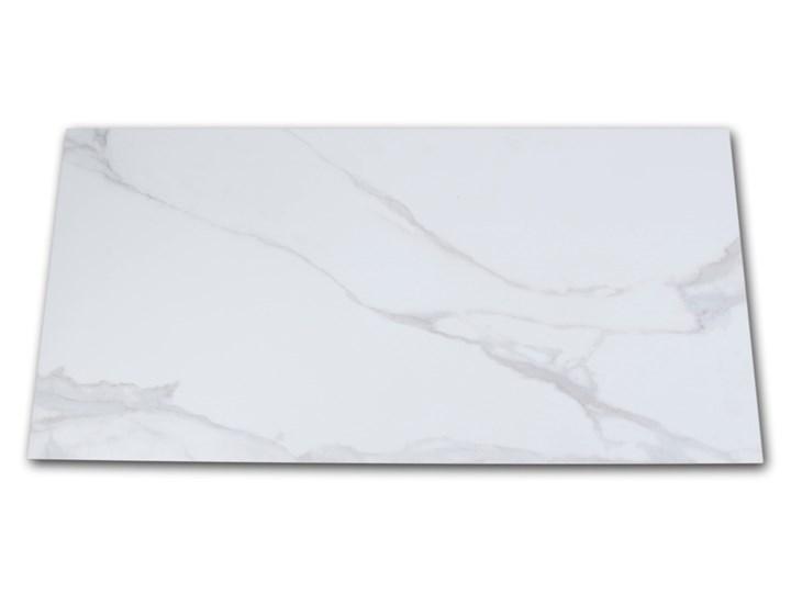 Pontremoli Mate 60x120 płytki imitujące marmur Gres Płytki ścienne Płytki podłogowe Prostokąt Powierzchnia Matowa 60x120 cm Kolor Biały