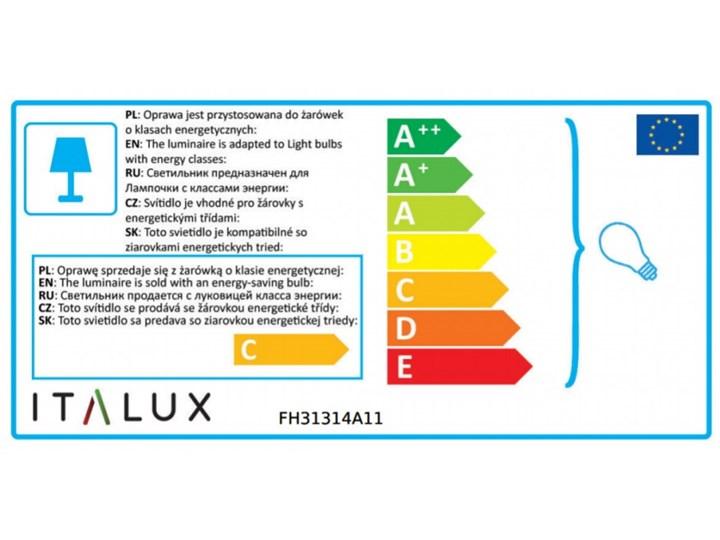 Oprawa natynkowa Lucien FH31314A11 ITALUX FH31314A11 | SPRAWDŹ RABAT W KOSZYKU ! Oprawa stropowa Kategoria Oprawy oświetleniowe