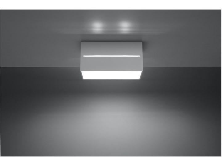 Oprawa natynkowa LOBO MAXI biała SL.0383 SOLLUX SL.0383 | SPRAWDŹ RABAT W KOSZYKU ! Oprawa led Oprawa stropowa Kolor Biały