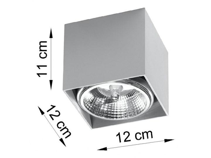 Oprawa natynkowa BLAKE szara SL.0699 SOLLUX SL.0699 | SPRAWDŹ RABAT W KOSZYKU ! Oprawa stropowa Kategoria Oprawy oświetleniowe