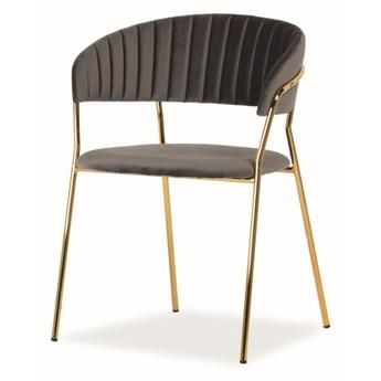 Krzesło LIRA VELVET szare SIGNAL