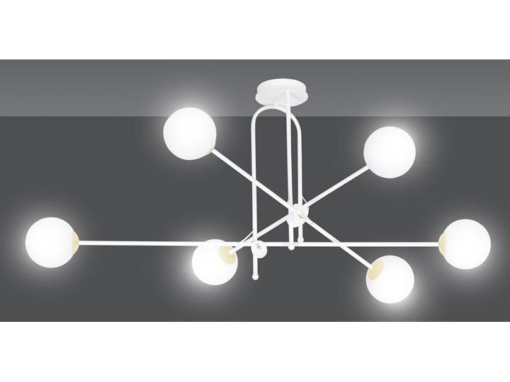 DIARF 6 WHITE GOLD 1013/6 lampa sufitowa plafon biała złota DESIGN Kolor Biały Szkło Metal Lampa z kloszem Funkcje Brak dodatkowych funkcji