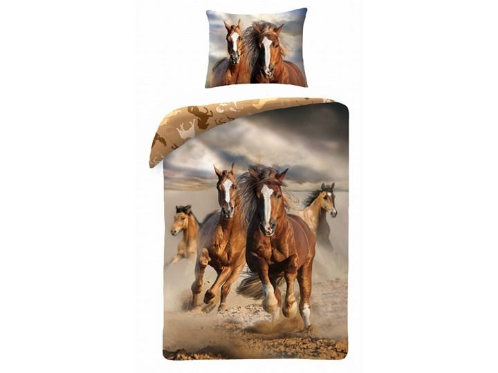 Pościel bawełniana 140x200 Konie Mustang, Halantex 140x200 cm Bawełna 70x90 cm Komplet pościeli Rozmiar poduszki 70x90 cm
