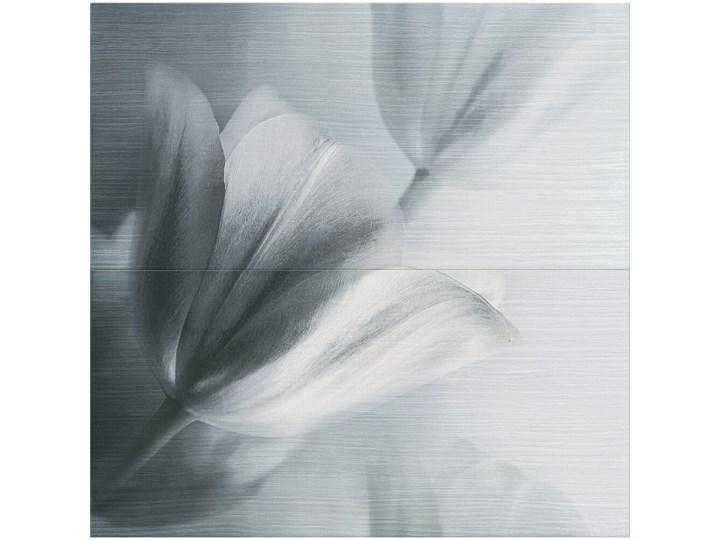Płytka ścienna kompozycja FLOWERS LINE grey 59,4x60 gat. I