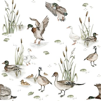 Tapeta Ducks Lake Return to Innocence Dekornik