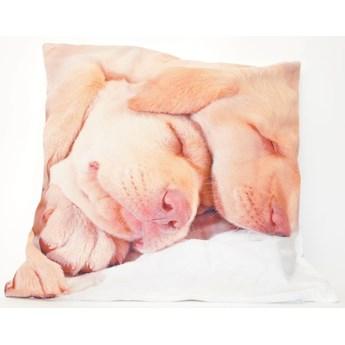 Poszewka dekoracyjna Sleep Dogs 42x42