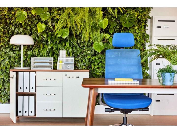 Komoda biurowa Evolutio D606, 120x40x80 cm Szerokość 120 cm Drewno Kolor Biały Głębokość 40 cm Kategoria Komody