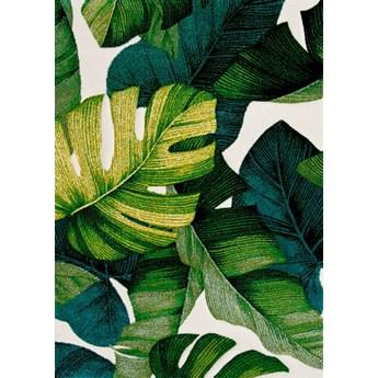 Dywan Diamond liscie monstera jungle zielony