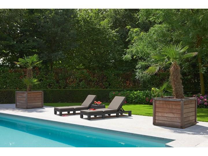 Komplet 2 szt. leżaków basenowych DAYTONA - brązowe Tworzywo sztuczne Leżanki Kolor Brązowy
