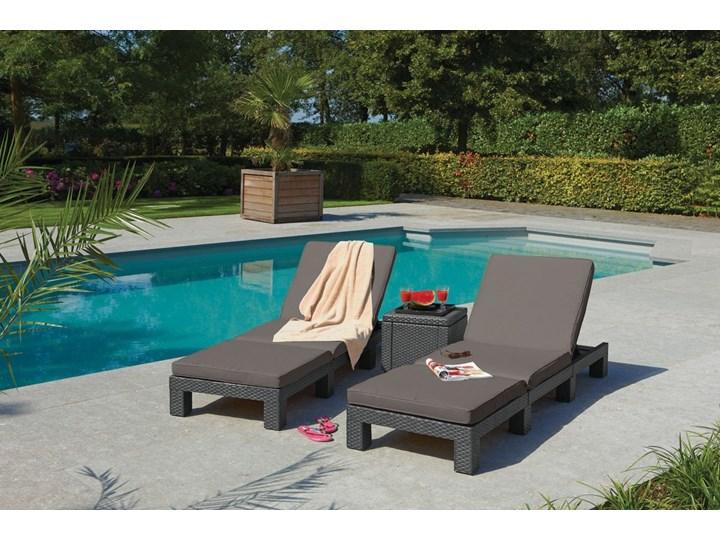 Komplet 2 szt. leżaków basenowych DAYTONA - brązowe Tworzywo sztuczne Leżanki Kolor Brązowy Kategoria Leżaki ogrodowe