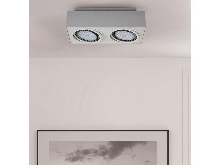 SELSEY Spot Ingram biały x2 Prostokątne Kategoria Oprawy oświetleniowe