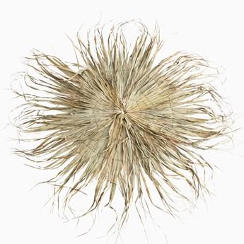 Duża dekoracja ścienna z Liści Palmowych okrąg