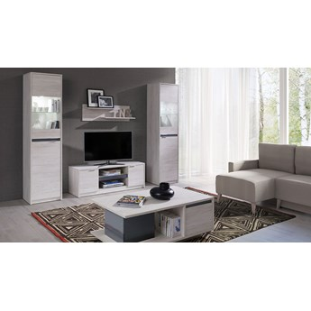 System DENVER, meble do salonu, dwie witryny i szafka RTV - Biały Dąb+grafit