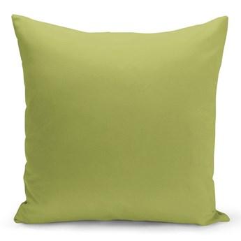 Jasnozielona poduszka Lisa, 43x43 cm