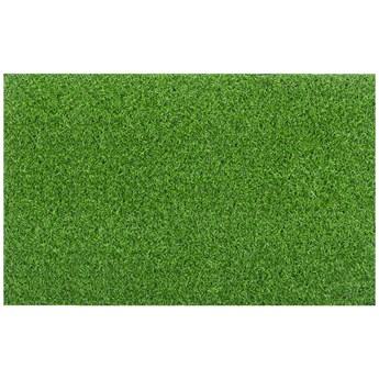 Wycieraczka Coir Zielona 44 x 65 cm