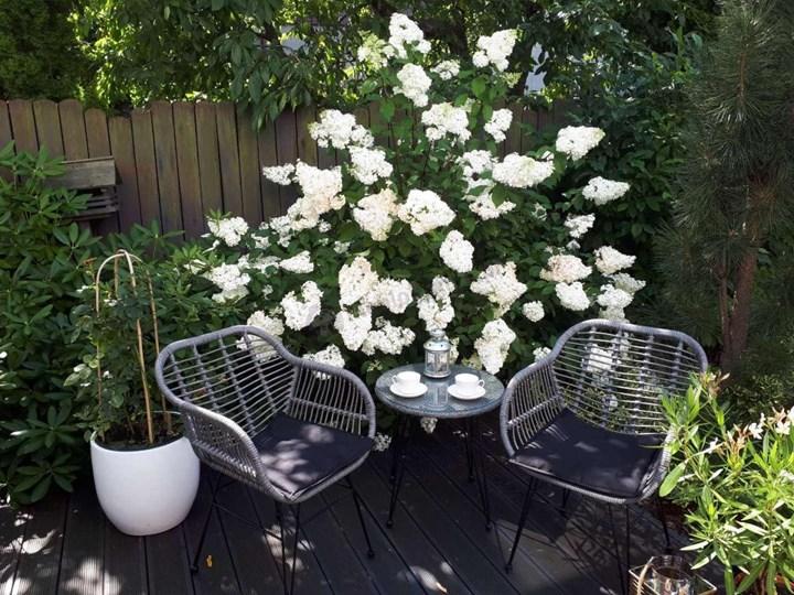 Meblobranie Nowoczesne meble balkonowe z technorattanu Torgiano Balcony Grey Stoły z krzesłami Styl Nowoczesny