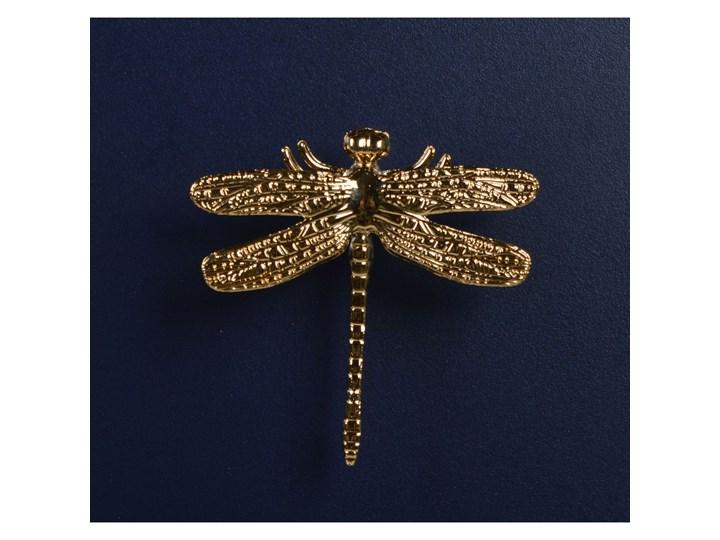 Szafka granatowa ze złotymi uchwytami GoldenFly Płyta laminowana Uniwersalne Płyta MDF Pomieszczenie Salon