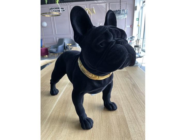 RICHMOND dekoracja DOG SPIKE czarny Zwierzęta Kategoria Figury i rzeźby