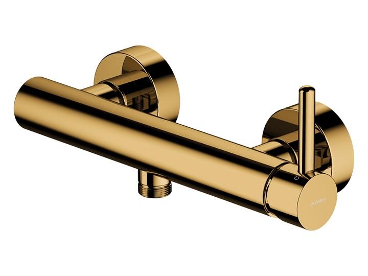 Bateria prysznicowa Y ścienna złota Y1240GL Bateria ścienna Kolor Złoty