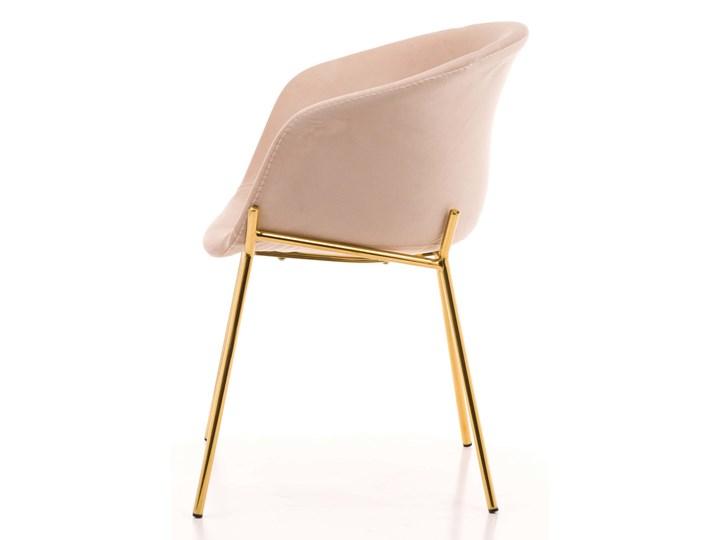 Krzesło Glamour ze złotymi nogami ZL-1486 beż welur Tapicerowane Tworzywo sztuczne Metal Tkanina Z podłokietnikiem Pomieszczenie Jadalnia Styl Nowoczesny