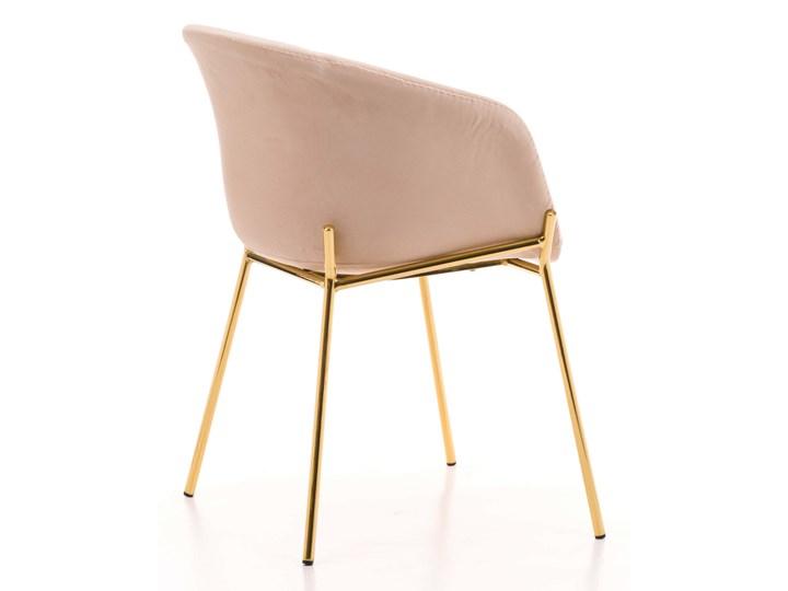 Krzesło Glamour ze złotymi nogami ZL-1486 beż welur Tkanina Tworzywo sztuczne Z podłokietnikiem Metal Tapicerowane Kategoria Krzesła kuchenne Pomieszczenie Jadalnia