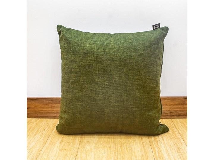 Poduszka Eco z wypełnieniem zielona Poliester Poduszka dekoracyjna Kolor Zielony