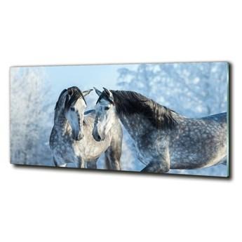 Foto-obraz szklany Szare konie zimą