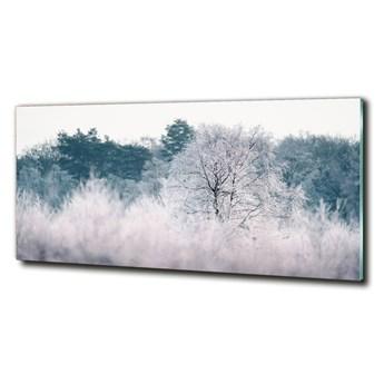 Foto obraz szkło hartowane Drzewa zimą