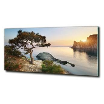 Foto obraz szklany Drzewo nad morzem