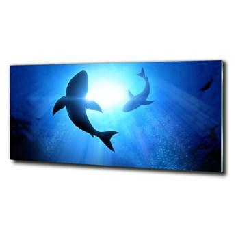 Foto-obraz szkło hartowane Dwa rekiny