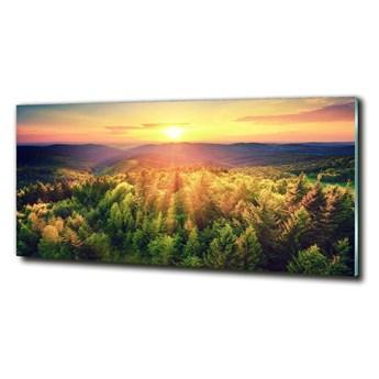 Foto obraz szklany Las zachód słońca