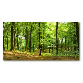 Foto obraz szkło hartowane Leśna ścieżka