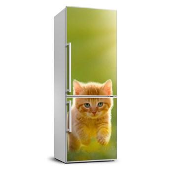 Naklejka okleina lodówkę Rudy kot