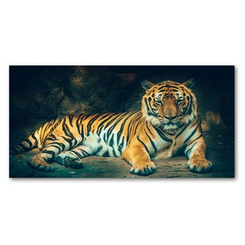 Foto obraz szkło akryl Tygrys w jaskini