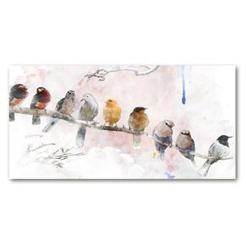 Obraz zdjęcie szkło akryl Ptaki na gałęzi