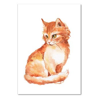 Foto obraz akrylowy na ścianę Rudy kot