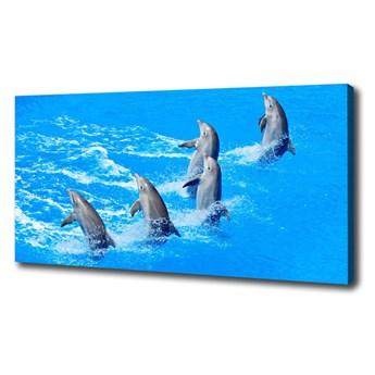 Foto obraz canvas Delfiny