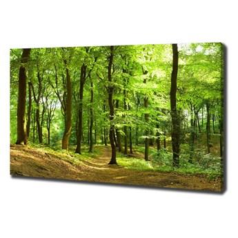Foto obraz na płótnie Leśna ścieżka