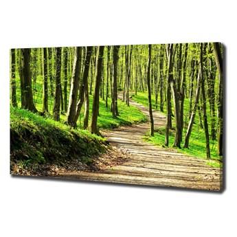 Foto obraz na płótnie Ścieżka w lesie